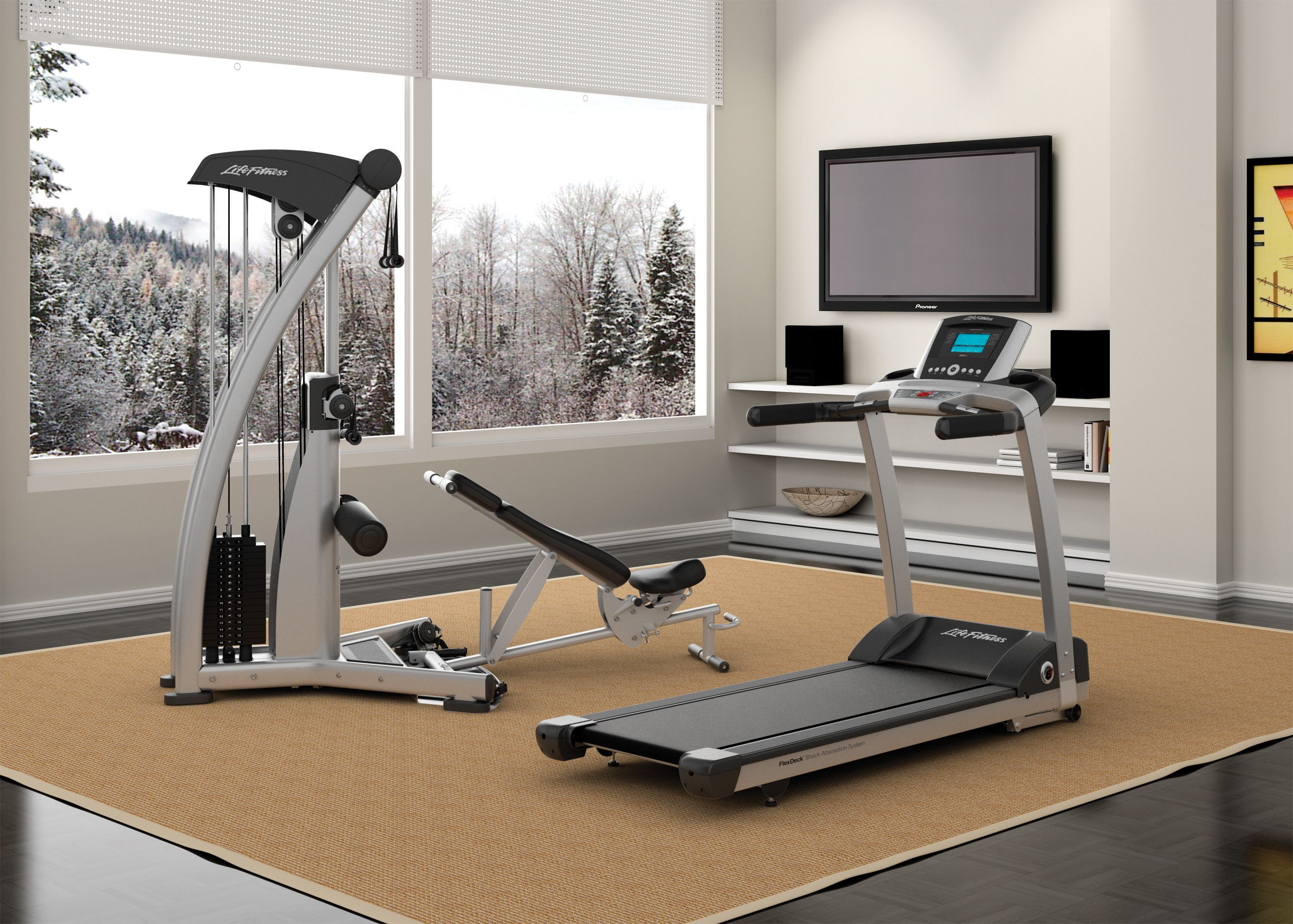 Fitness Equipment In Narellan: The Perfect Way To Improve Your Lifestyle.