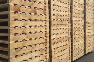 Everything You Need To Know About Export Pallets